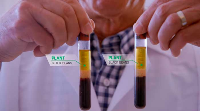 Fra filmen Game Changers | page69 utforske plantebasert kosthold og effekt på erektil funksjon