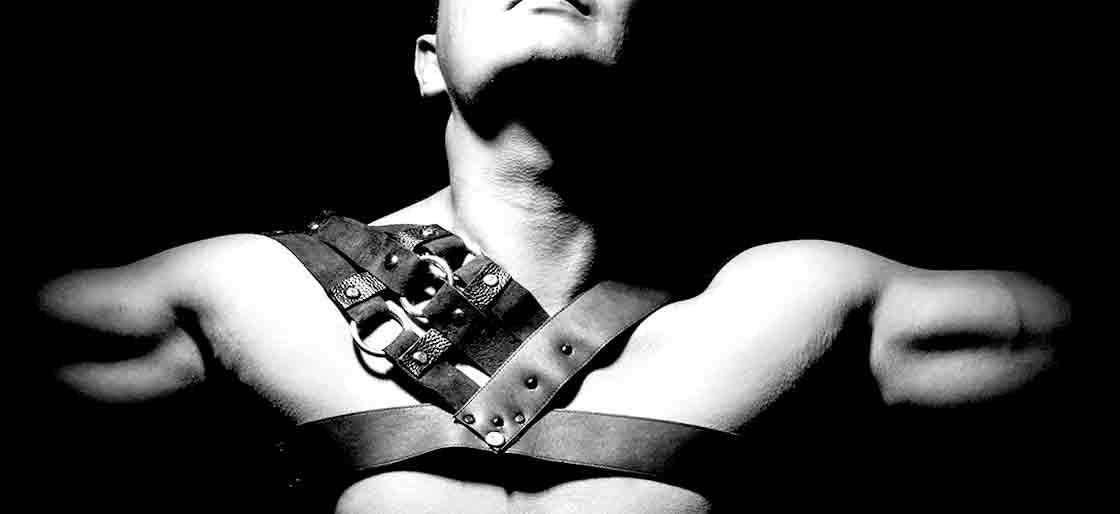 harness-1120x514